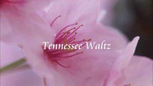 テネシーワルツ